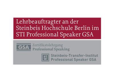 > Dozent Steinbeis Hochschule 2010-2015